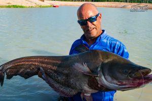 Wallago Leerii Hookers Fishing Lake Pattaya