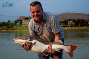 amazon redtail fish