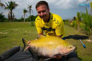 tambaqui fish