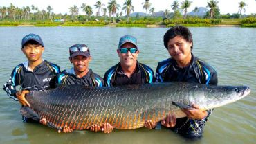 FISHING FOR THE BIGGEST ARAPAIMA IN PATTAYA: THE ULTIMATE PREDATOR FISHING EXPERIENCE GETS EVEN BETTER AT PATTAYA'S PREMIER FISHING PARK, HOOKERS FISHING LAKE